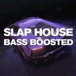 Slap House(スラップ・ハウス)/Bass Boosted House(ベース・ブーステッド・ハウス)とは